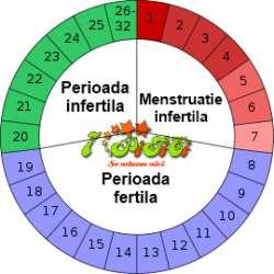 Calendarul dupa ciclu