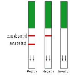 Test sarcina